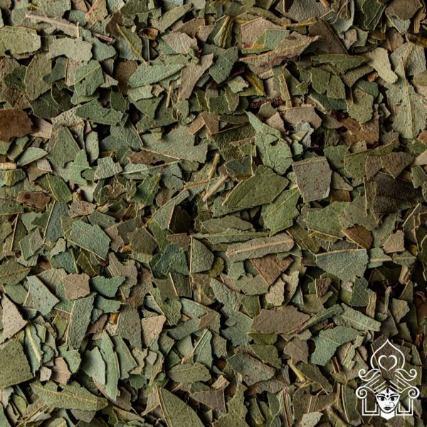 Teehaus Shila, Eukalyptus